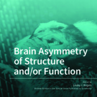 Brain_Asymmetry_of_Structure_andor_Function.pdf