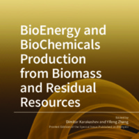 BioEnergy_and_BioChemicals_Production_from_Biomass_and_Residual_Resources.pdf