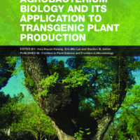 Agrobacterium biology and its application to transgenic plant production