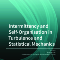 Intermittency_and_SelfOrganisation_in_Turbulence_and_Statistical_Mechanics.pdf
