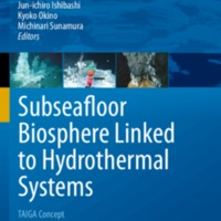 Subseafloor Biosphere Linked to Hydrothermal Systems: TAIGA Concept