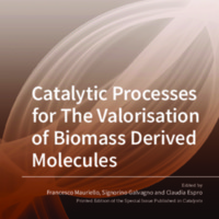 Catalytic_Processes_for_The_Valorisation_of_Biomass_Derived_Molecules.pdf