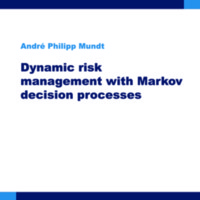 Dynamic risk management with Markov decision processes